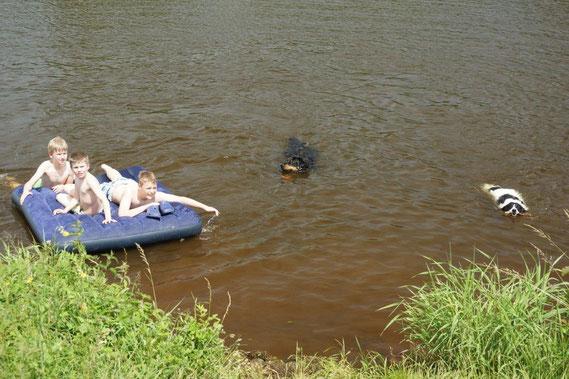hier hat niemand Angst vor dem großen, schwarzem Hund!