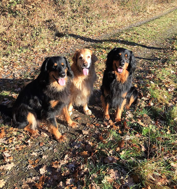 Kleiner Familienausflug: von links Annabelle, Thaler, Baki