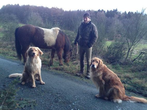 """Am Ende eines langen Tages, stellt Booker seiner Mama noch eins """"seiner"""" Pferde vor..."""