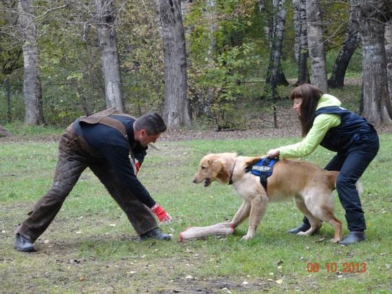 Oktober 2013: VPG workshop in der Ukraine