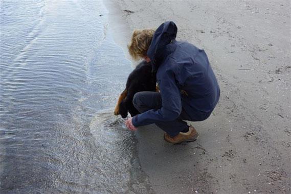 erster Kontakt mit der Ostsee