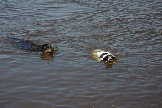 Wasserwart Bjarny mit Kumpel Rocky