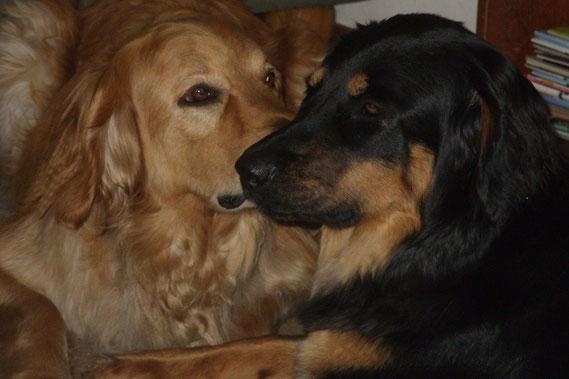 Zwei, die sich gut verstehen ! (Mutter und Tochter, Januar 2013)