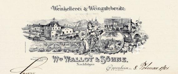 Briefkopf der Weinkellerei Wallot & Söhne (Oppenheim, 1901) / © Sammlung PRISARD