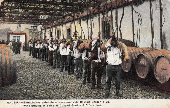 IMA.20.035 Ansichtskarte des Weinhauses Cossart & Gordon (Madeira, 1920) / © Sammlung PRISARD