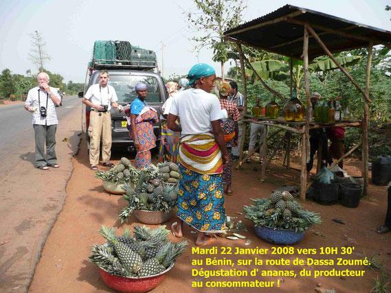 Entre Cotonou et Dassa Zoumé, vente, dégustation d' ananas. 399 KO.