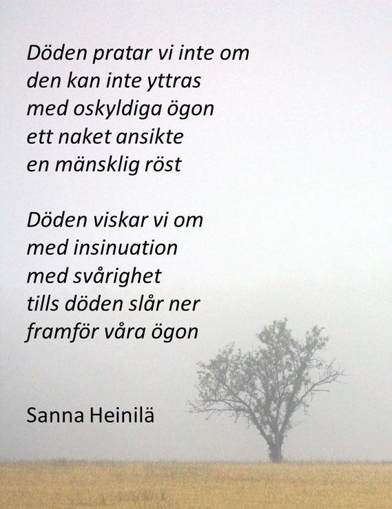 """Ur """"Vargen i Tulisaari""""."""