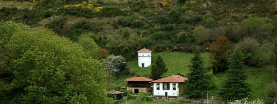 Palomar de La Casona ( Ambás )