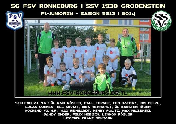 Team 2013 / 2014 F-I
