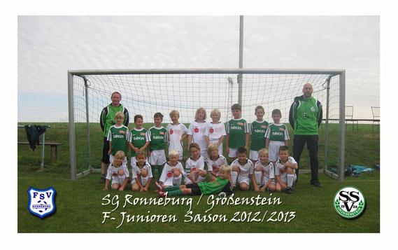 Team 2012/2013
