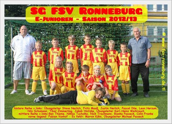 Team 2012 / 2013