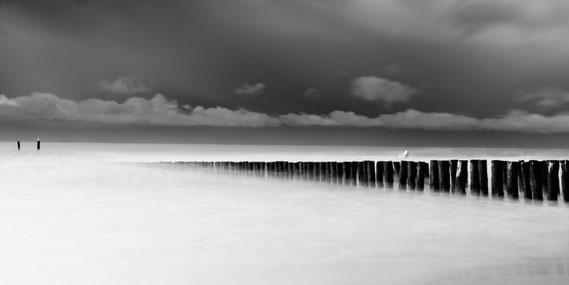 Foto van de maand - November 2012 - Hans Seweuster