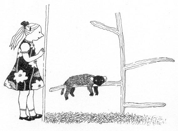 Lola Renn, Illustration, sloth, children's book, zoo