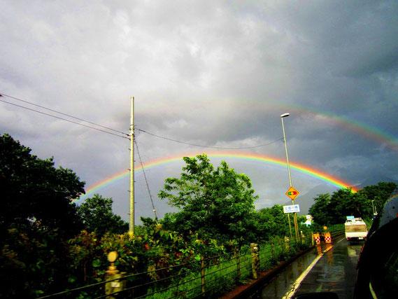 美しい虹の架け橋