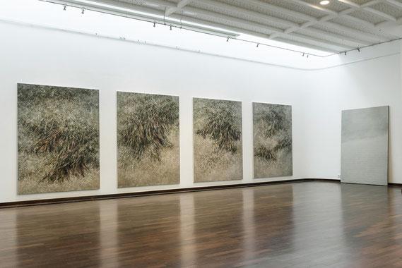 Skripturen  Städtische Galerie Kaarst 2016   © Klaus Stevens