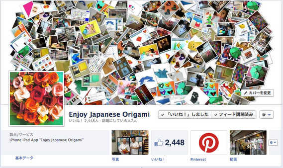 Enjoy Japanese Origami