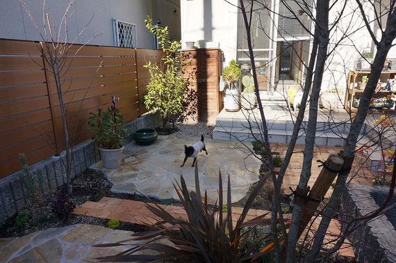 After 石貼りテラスのお庭でワンちゃん達も大はしゃぎ!