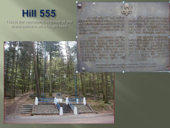 Monument on Hill 555