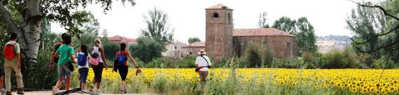 Camino Santiago Soria