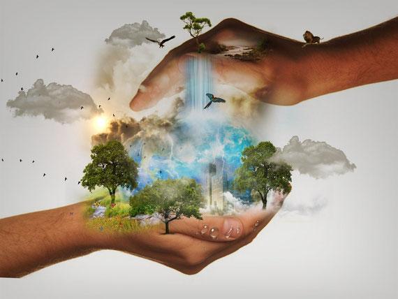 Warum wir hier sind. - Der Geist, das höhere Bewusstsein und die Schöpferkraft