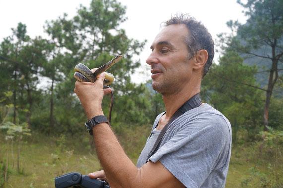 Avec une couleuvre, Ptyas korros ©Michel AYMERICH/Chen Xinghe