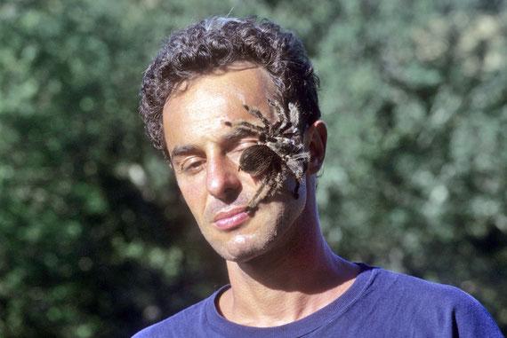 Sur mon visage, une inoffensive (eh oui!) mygale de l'espèce Brachypelma albopilosa ©Philippe  AYMERICH/Michel AYMERICH