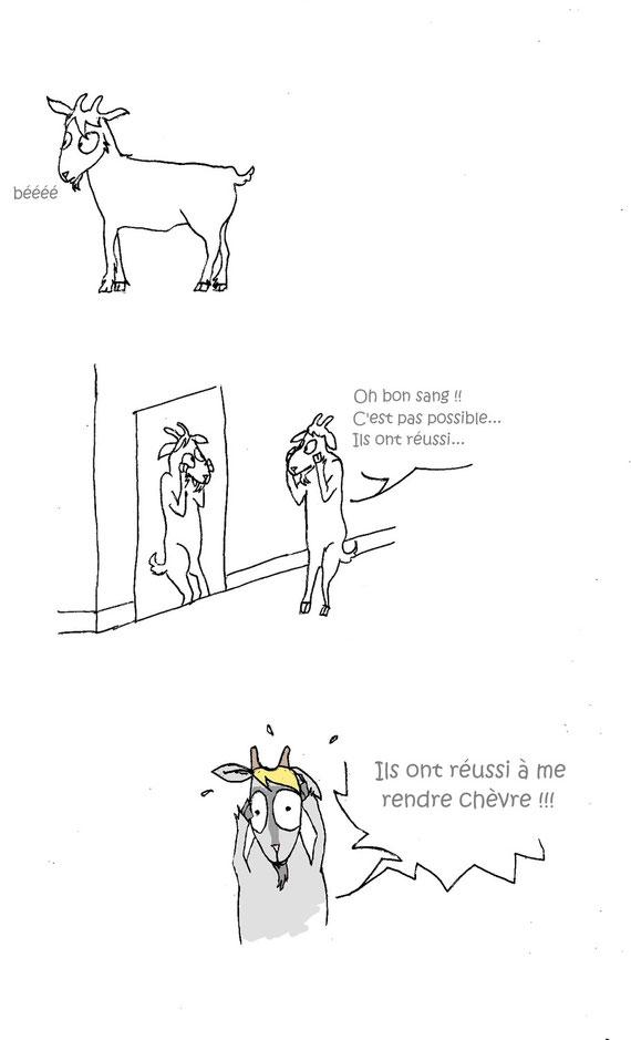 """"""" Il ne faut pas prendre les enfants du bon Dieu pour des canards sauvages."""" proverbe français"""