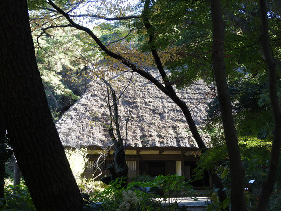 旧東慶寺仏殿から観る