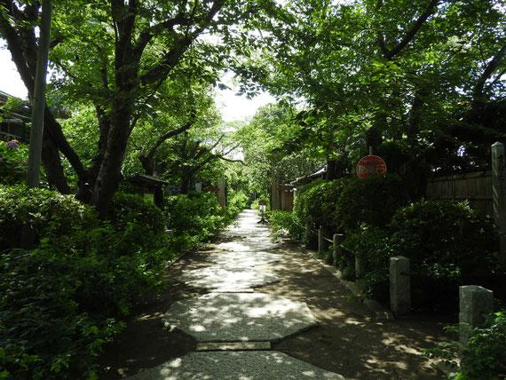 鎌倉 宝戒寺の参道