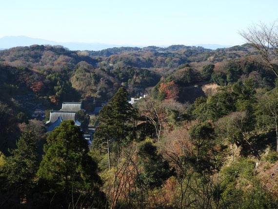 半僧坊から、紅葉の樹木に包まれる建長寺