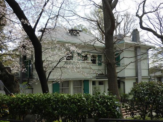 エリスマン邸、表面のデザイン
