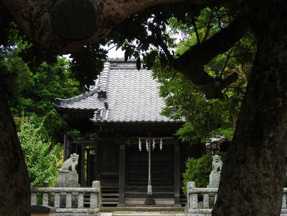 扇ケ谷 八坂神社の狛犬