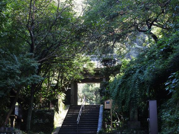 円覚寺黄梅院山門 9月