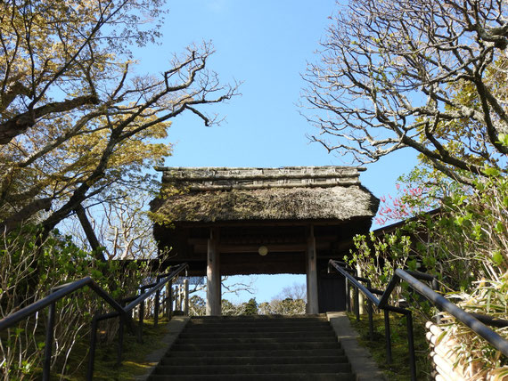 東慶寺山門 4月