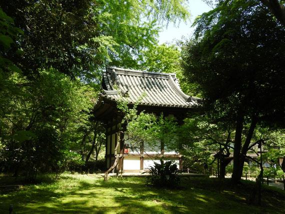 三溪園旧天瑞寺寿塔覇堂 4月