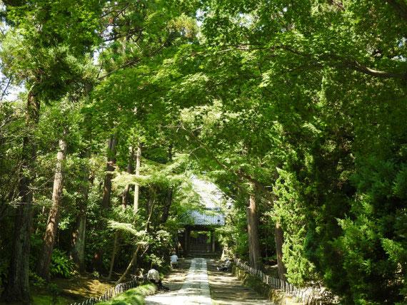壽福寺の石畳の参道