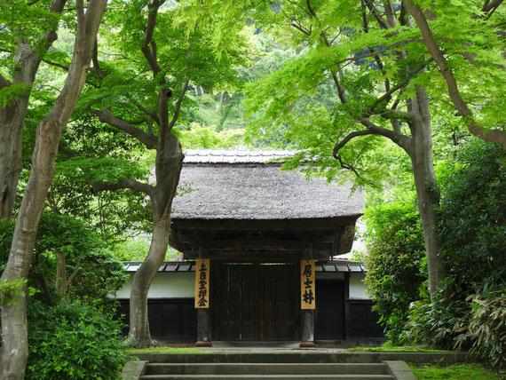 円覚寺専門道場 居士林