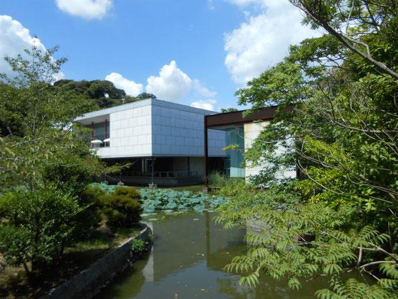 八幡宮の参道から、鎌倉近代美術館外観