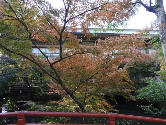 鶴岡八幡宮、直会澱