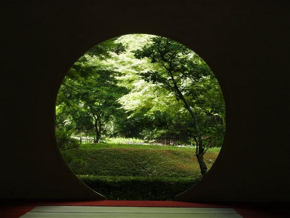 明月院本堂(開山堂)方丈の丸窓 6月