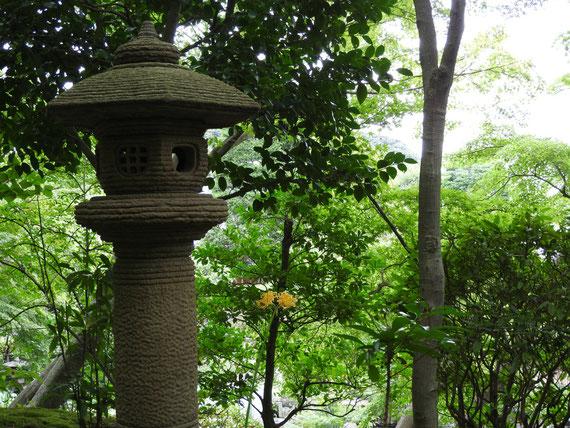 境内の灯籠と曼珠沙華
