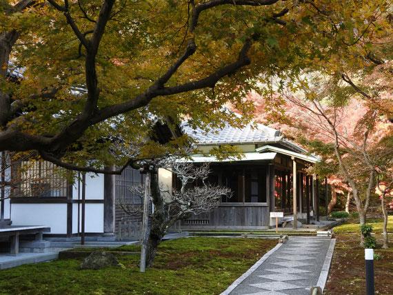 紅葉の、長寿禅寺書院