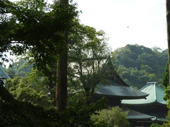 鎌倉 建長寺全景