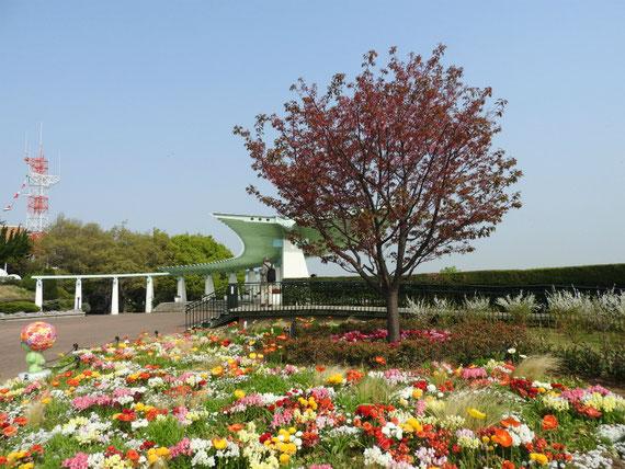 港の見える丘公園、花と展望台
