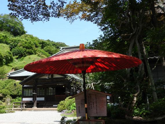 案内和傘と本堂
