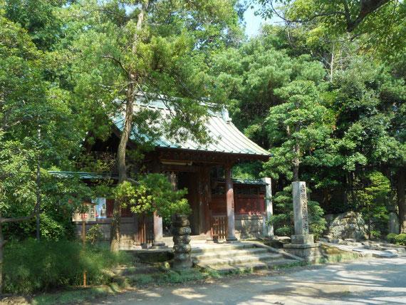 8月の壽福寺。源実朝と北条政子母子が眠る、鎌倉五山第三位の壽福金剛禅寺。また訪れたいお寺です。