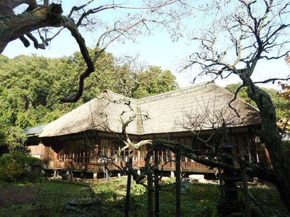 方丈・客殿に囲まれた中庭の風景