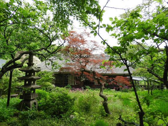 浄智寺方丈客殿 5月