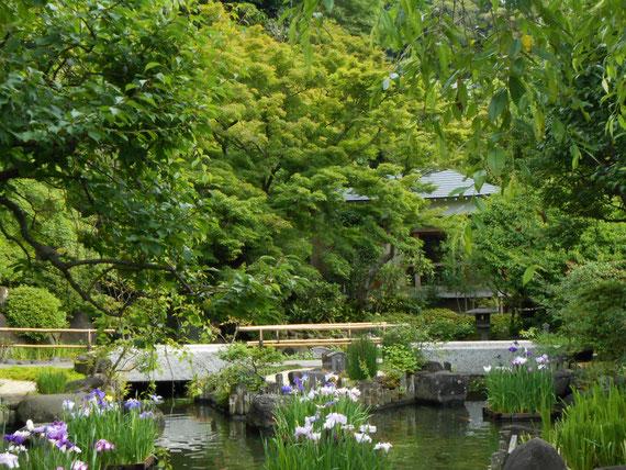 長谷寺日本庭園