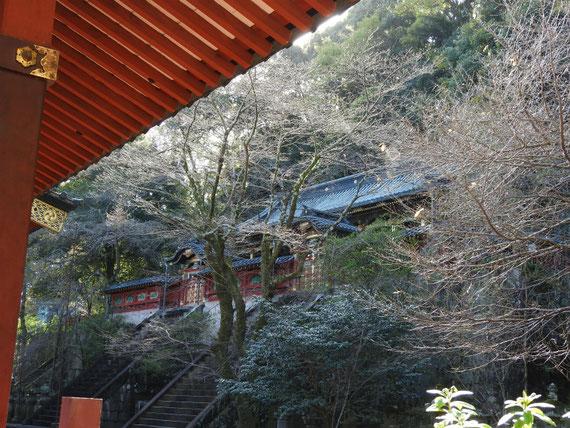 静岡浅間神社本殿 11月